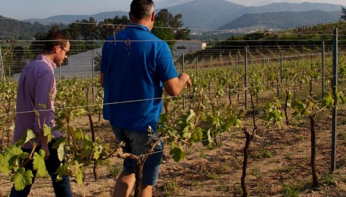 """Mariano Fisac, Galicia entre copas: """"La imagen del vino en España es aburrida y elitista"""""""